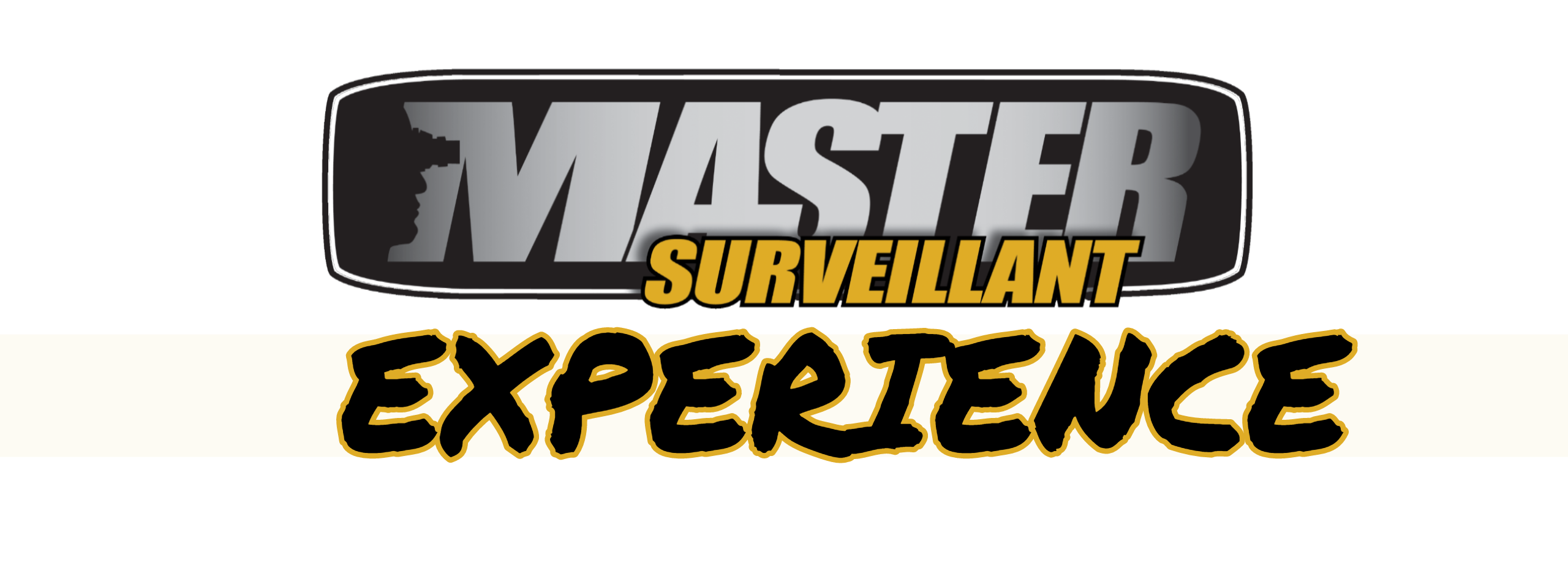 Master Surveillant Experience